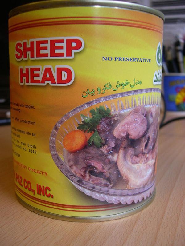 sheephead 0708161